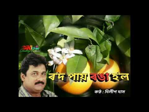 Rod Pai Ronga Hol (ৰ'দ পায় ৰঙা হ'ল) - By Dilip Das