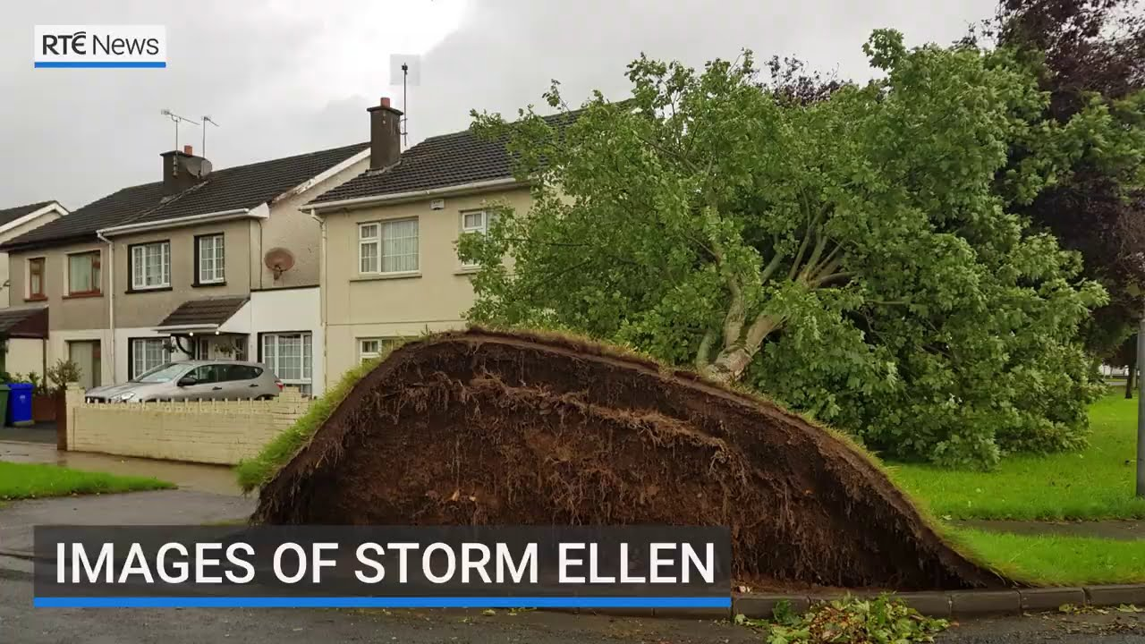 Images of Storm Ellen