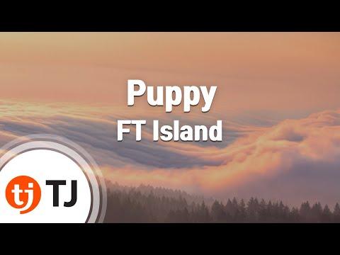 [TJ노래방] Puppy - FT Island (Puppy - FT Island) / TJ Karaoke