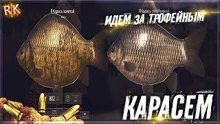 Russian Fishing 4 идем за трофейным карасем оз.Комаринка