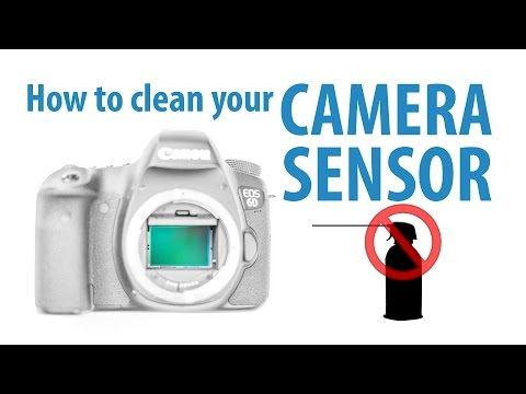 Clean Your Own DSLR Camera's Sensor Like a Pro