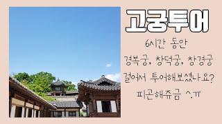 [일상•VLOG] EP. 38 고궁투어 - 경복궁, 창…