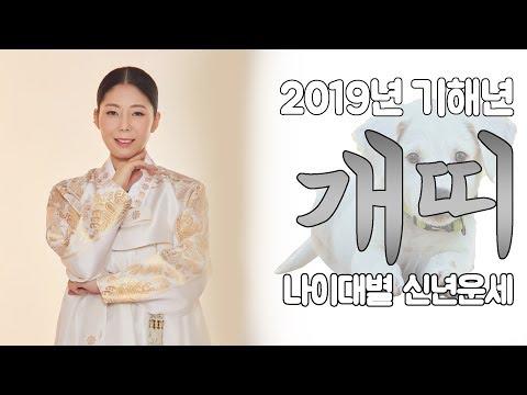 [목단아씨당] 2019년 기해년 개띠 나이대별 신년운세