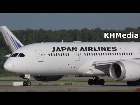 Boeing 787-8 Japan Airlines Домодедово 2017 B787-8 B788 JAL DME Domodedovo Dreamliner