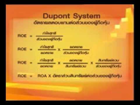 ชุดที่ 5 Dupont System
