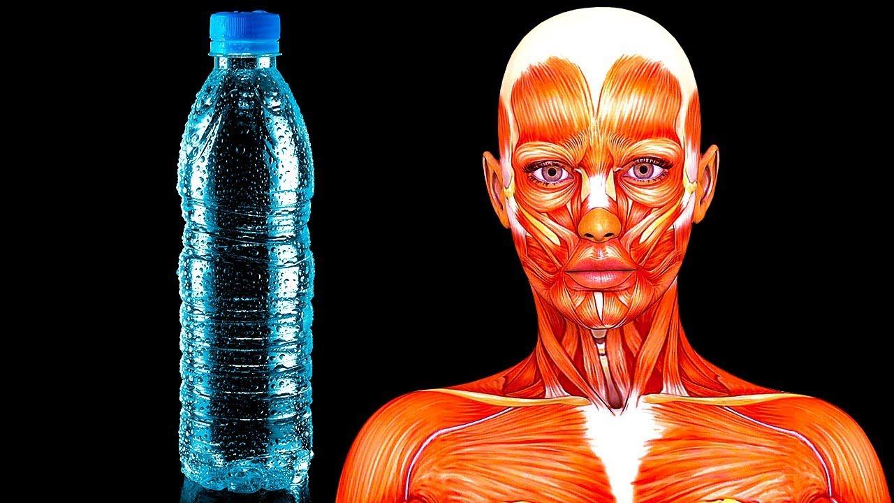 Como bajar de peso solo bebiendo agua