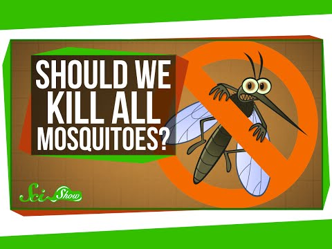 What If We Killed All the Mosquitoes?