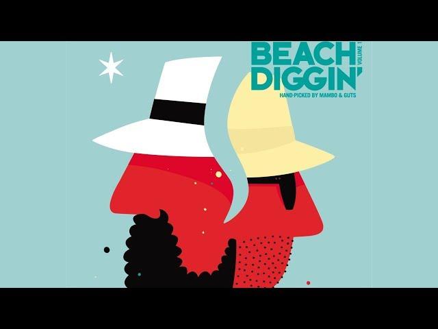 DJ Damage - Beach Diggin Continuous Mix