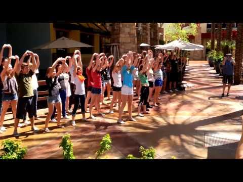 Horizon High School Flash Mob