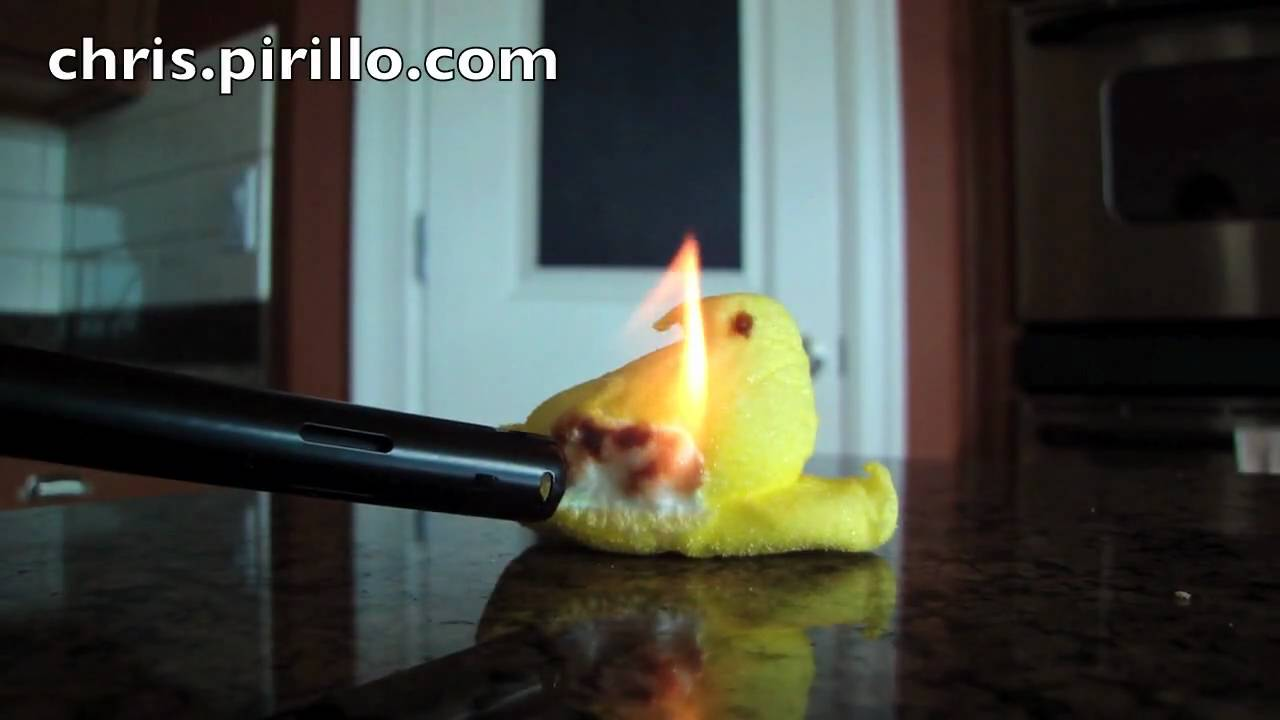 10 Ways To Kill Marshmallow Peeps Microwave Included