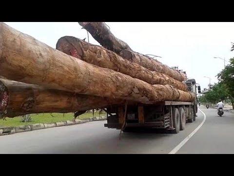 Bình Thuận: Xem Xe Cẩu Tự Hành Cẩu Và Vận Chuyển Hàng