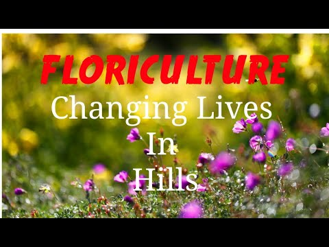 FLORICULTURE:CHANGING LIVES IN HILSS OF JAMMU DIVISION