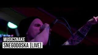 MusicSnake - Snegodoska [live]