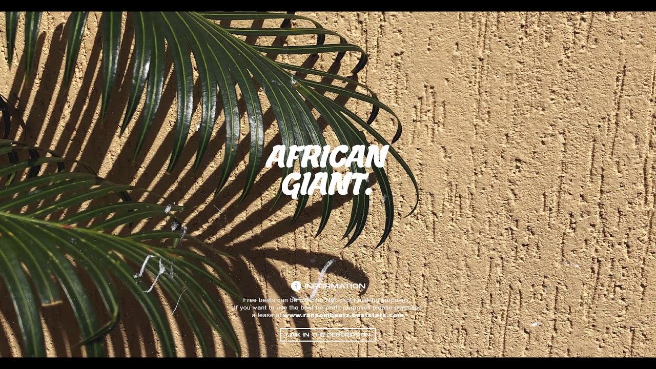 [FREE] Burna boy x Wizkid x Afrobeat Type Beat 2020 - African Giant