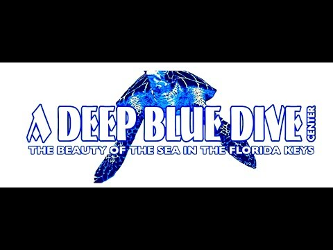Where can I dive in the Floriday Keys after Irma:  A Deep Blue Dive Center