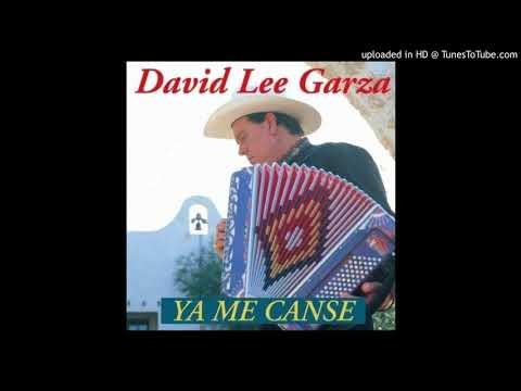 David Lee Garza y Los Musicales - What Lonely Means (1994)