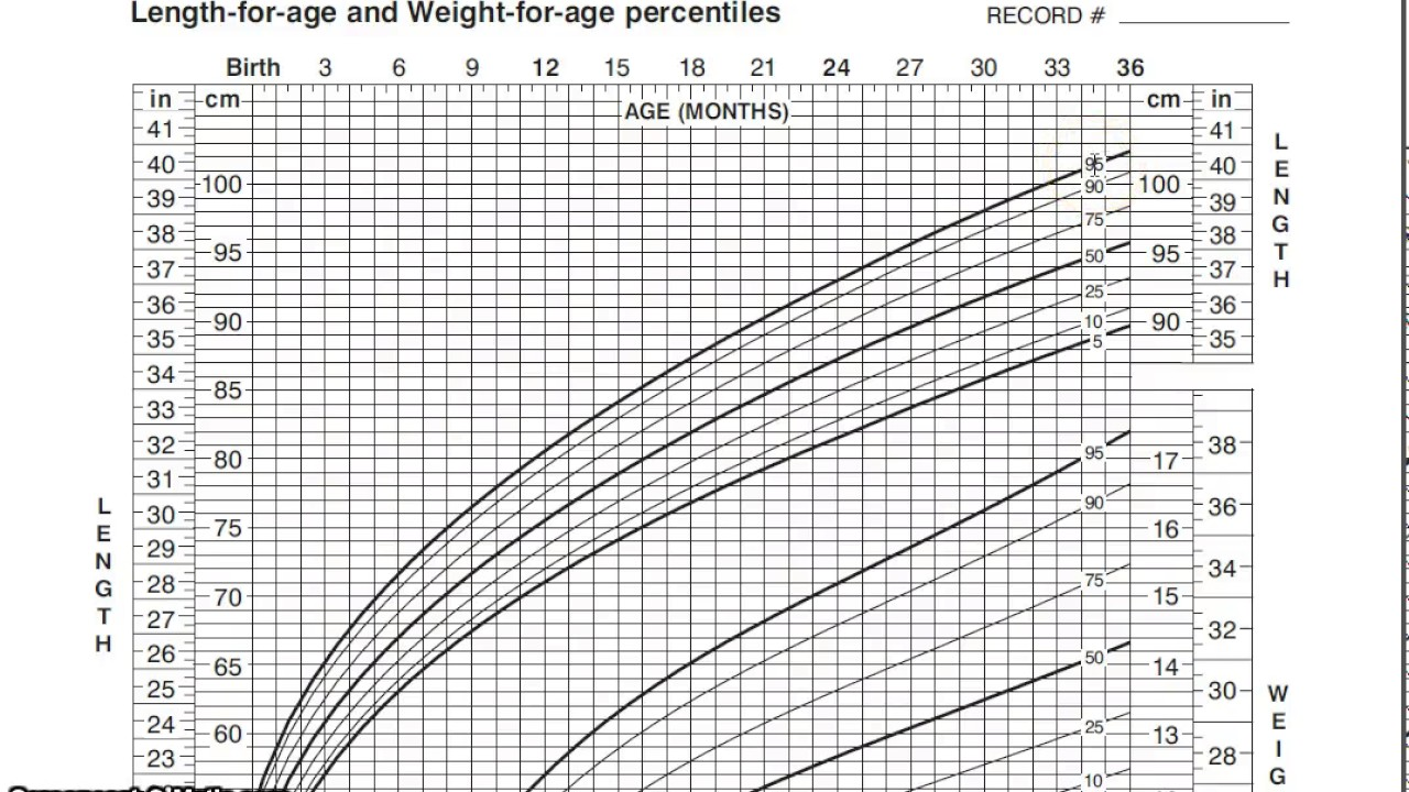 Pediatric Growth Chart Youtube