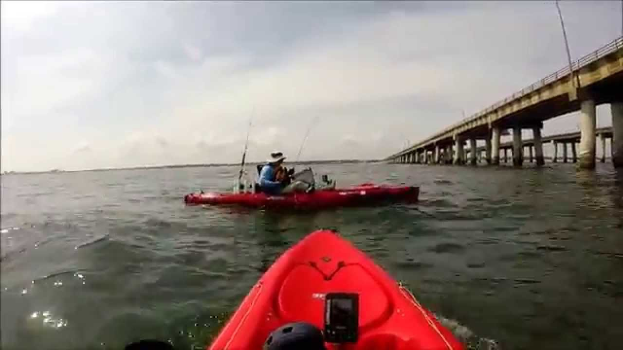 Flounder at chesapeake bay bridge tunnel aug 8 2014 for Chesapeake bay bridge fishing report