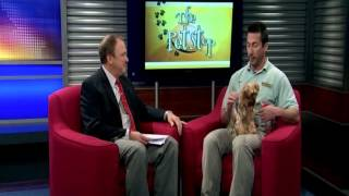 Dog Park Safety - News12 New Jersey The Pet Stop May 12, 2012