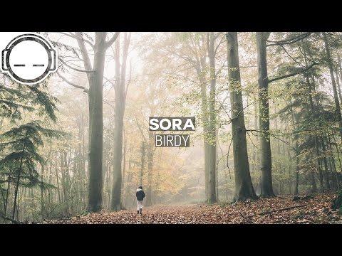 SORA - Birdy ~ Ambient deep bass chill music