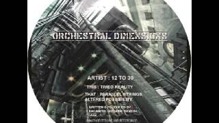 12 To 30 - Altered Possibility - Sistrum Recordings