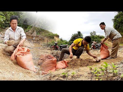 Sib Pab Kho Plag Tsev Ua Mov 《14/7/2019》