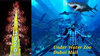 Dubai Burj Khalifa 2020 Fireworks | Under Water Zoo | New year Celebrations Dubai