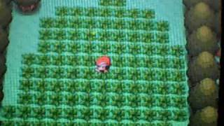 Pokemon Diamond -- Pokeradar: Shiny Snubbull [FULL CHAIN]  [3/3]