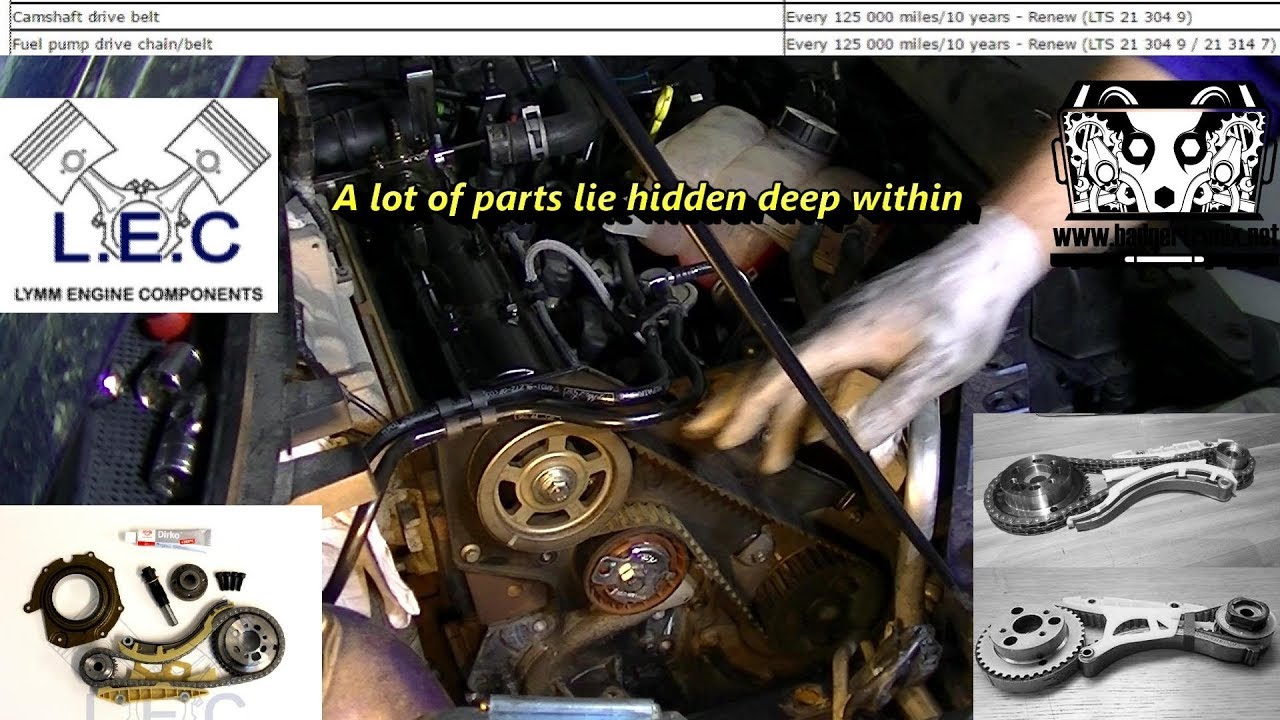 Ford 1 8 Tdci Fai Timing Chain Conversion Install Youtube