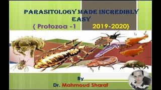vizelet protozoa anthelmintikum sokféle ember számára