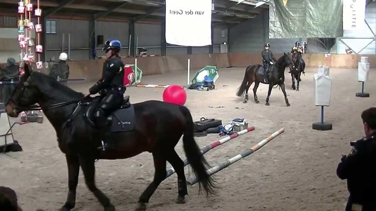 Demonstratie Met De Paarden In De Politie Manege Van