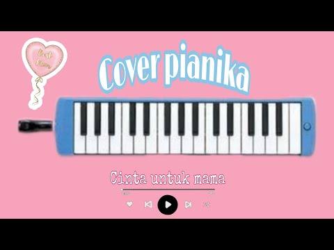 Cover pianika