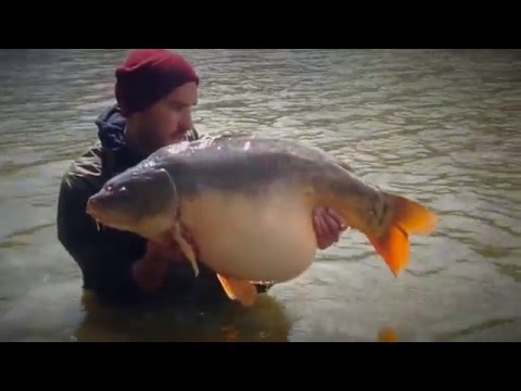 Carp Fishing In France Etang Le Fays April 2016