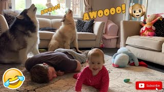 Pretending To Faint In Front Of My Dogs And Baby! (Cutest Reactions Ever!!)