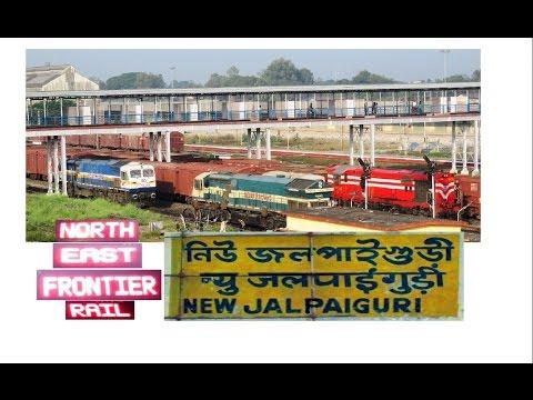 Morning View of New Jalpaiguri Yard | Mecca of NFR
