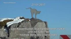 Katzenbuckel Odenwald im Winter  , Katzenbuckelschanze, Turm