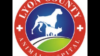 Lyon County Animal Hospital Eddyville Kentucky
