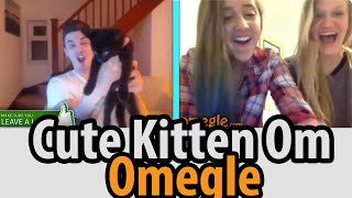CUTE KITTEN ON OMEGLE (Omegle Funny Moments)