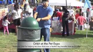 Fearful Leash Agressive Rescue Dog Off Leash And Happy At Pet Expo, Nj Dog Training