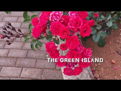 Madeira documentary : The Green Island