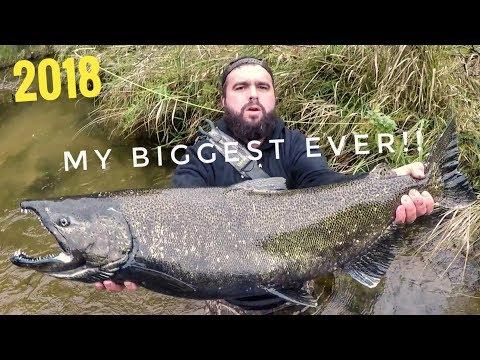 Fall Salmon Fishing In Michigan - Massive King! Pere Marquette River