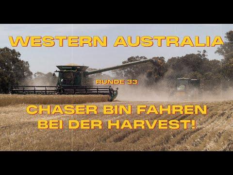 Runde 33 - Chaser Bin Fahren Bei Der Harvest! - Australien   Weltreise Vlog