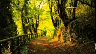 Yanni - Felitsa 432 Hz