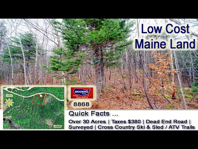 Inexpensive Land In Maine For Sale | Over 30 Acres MOOERS REALTY #8868