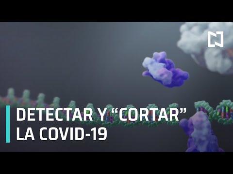 Edición genética contra la COVID-19 - Sábados de Foro
