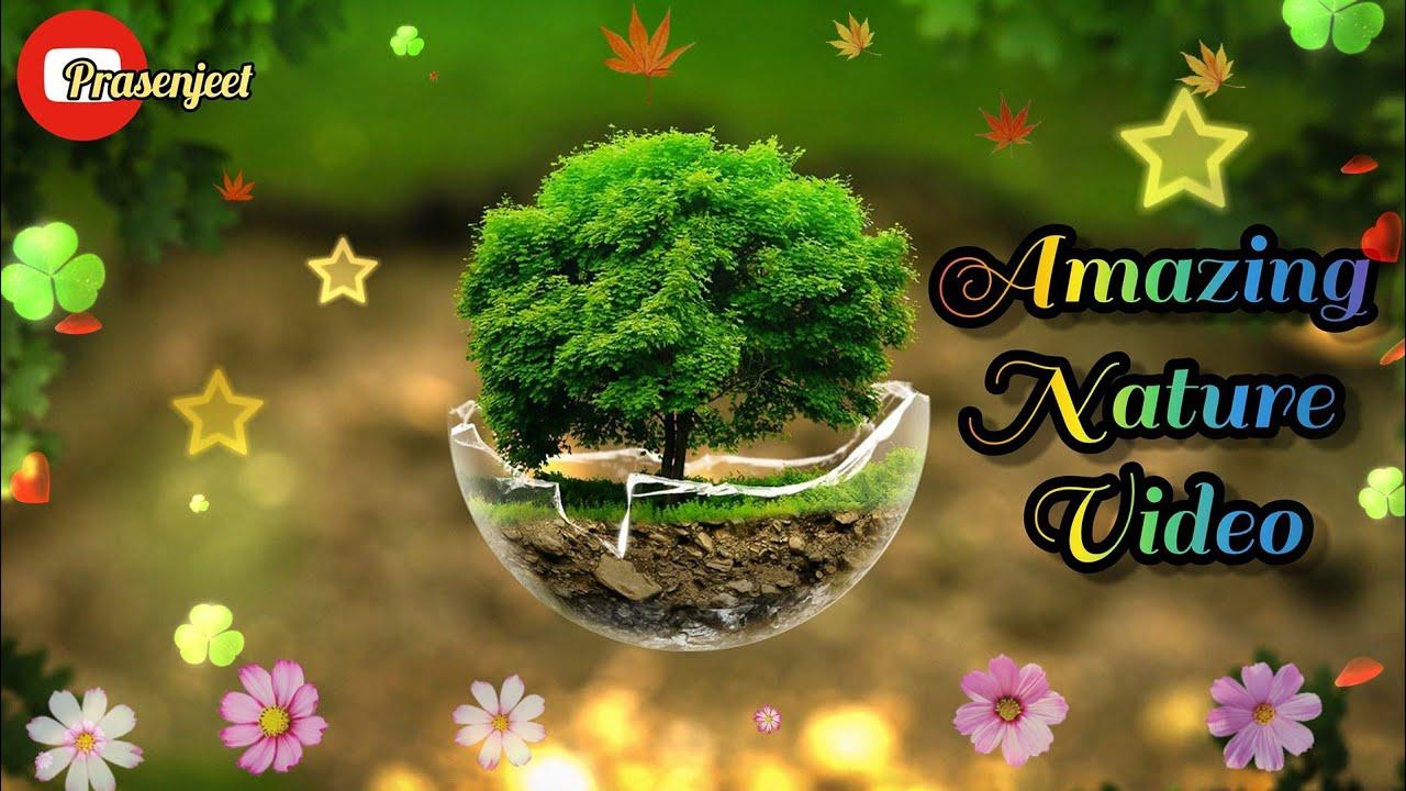 Amazing Beautiful Nature Whatsapp Status Video By Prasenjeet Meshram
