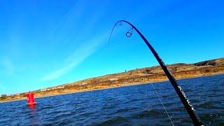 Рыбалка в ноябре 2019 ЗАКИНУЛ ПРИМАНКУ ПОД БАКЕН И НАЧАЛОСЬ