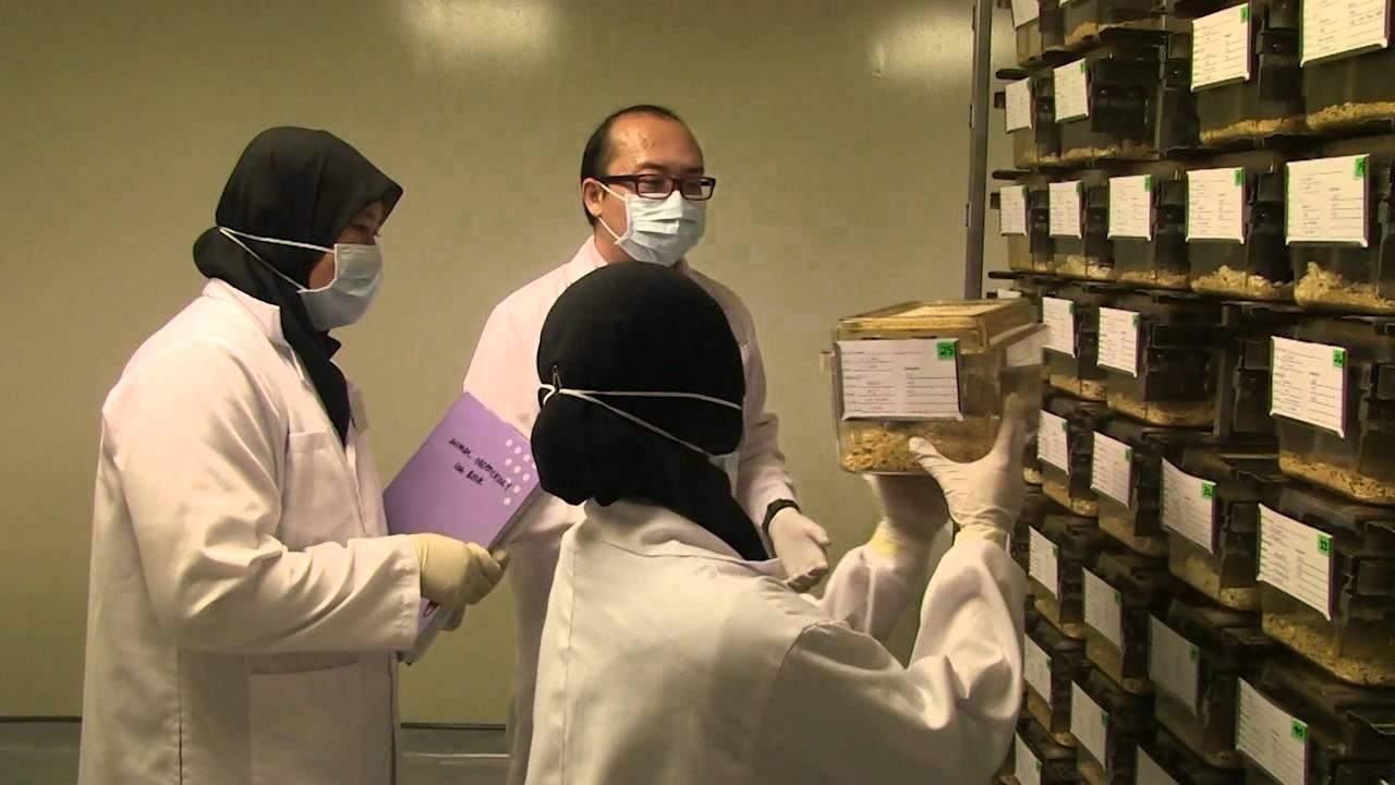 Behavioral Pharmacology Lab (Animal Laboratory Facility) - A CRO ...