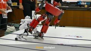 Robot Dövüşleri.