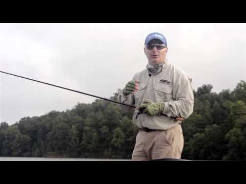Why Bass Move Shallower in Late Summer and Early Fall